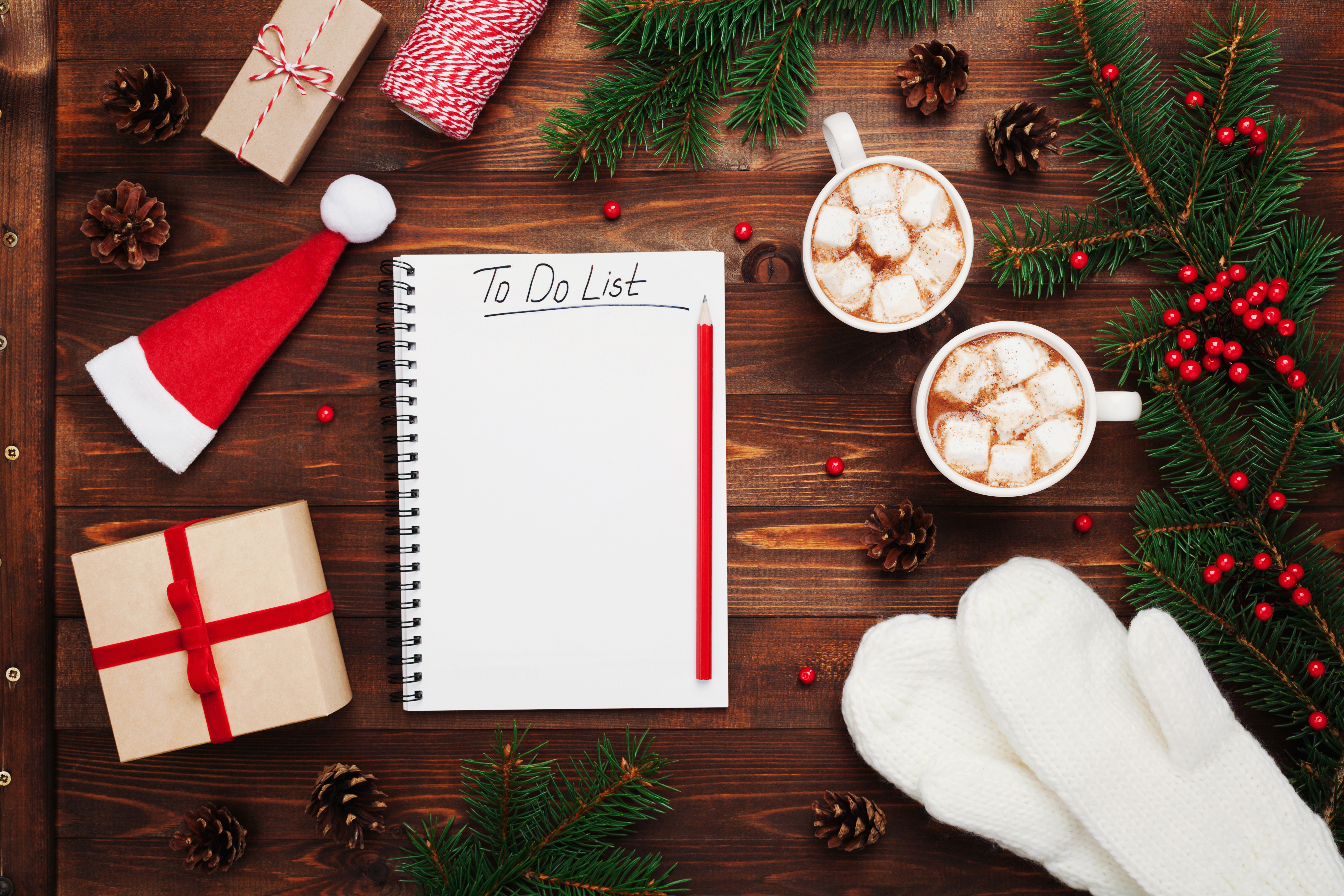 7 TIPS TO SURVIVE THE HOLIDAY MADNESS