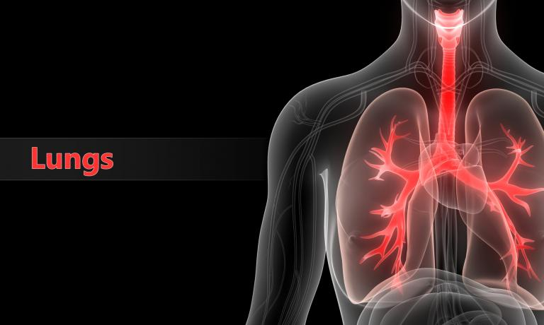 October is Healthy Lung Month!