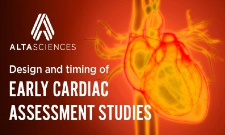 Early cardiac assessment studies to determine cardiac safety profile