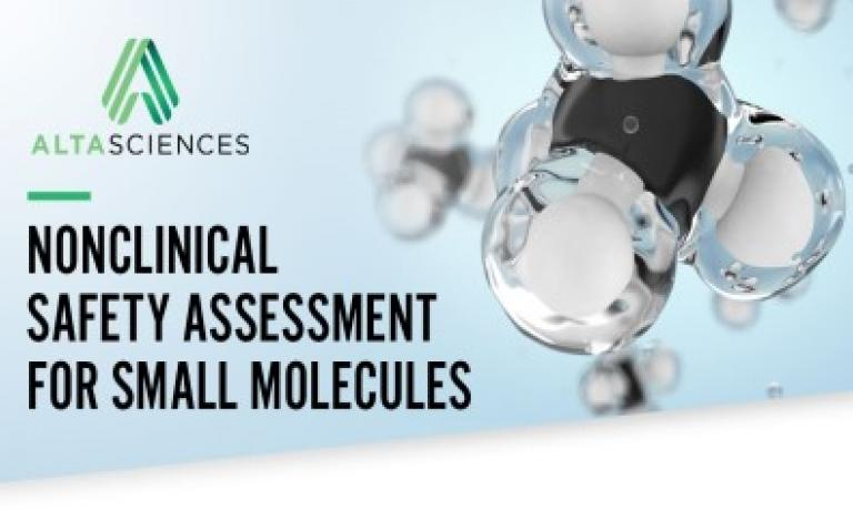 Nonclinical Safety Assessment for Small Molecules
